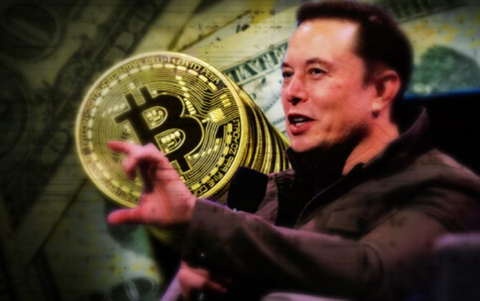 In less than 40 days, Elon Musk and Tesla's Bitcoin investment has increased by 70%