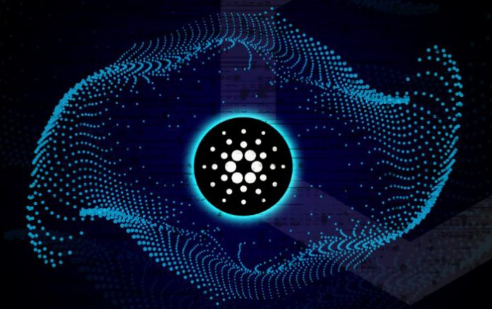 The Top Reasons Why Retail Traders Like Cardano |ADA Price