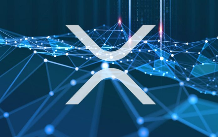 Ripple-Backed Developer Launches Proposal To Bring Red-Hot NFTs to XRP Ledger
