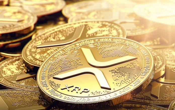 Here's Why Ripple XRP Could Be the Crypto Option to Own Right Now