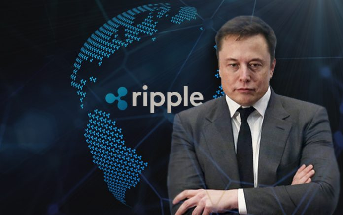 """Elon Musk Just Handed the Best """"Ad Campaign"""" to Ripple and XRP: Attorney John Deaton"""