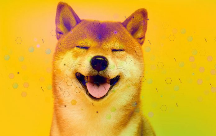 Elon Musk Tweets About DOGE's Shiba Inu Again, Here's What He Shows This Time
