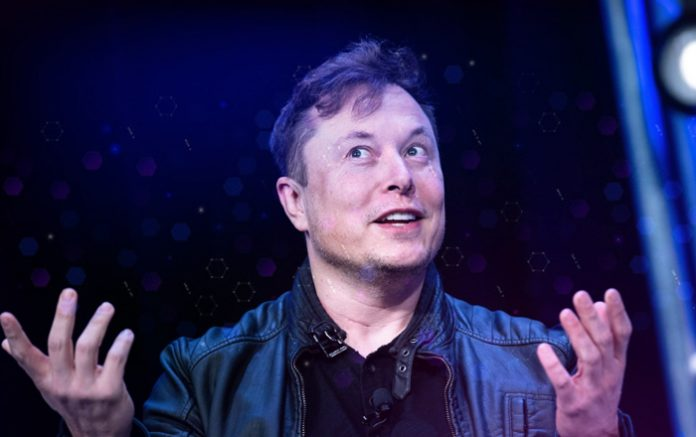 Elon Musk Says He Owns Bitcoin, Ethereum and Dogecoin, With Tesla and SpaceX Holding BTC for the Long Run